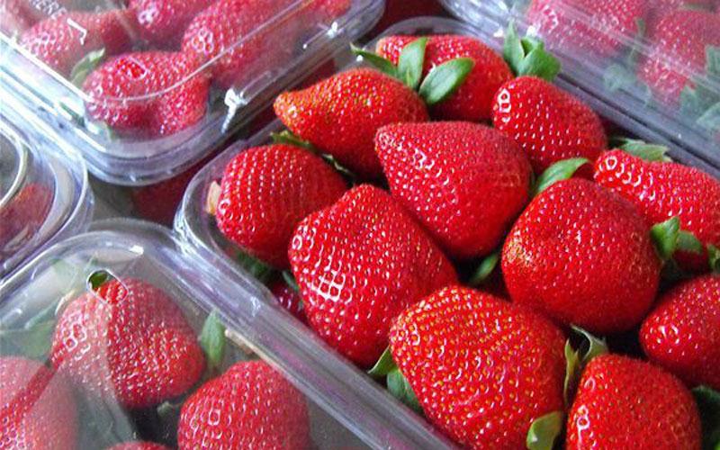 Φράουλες… γεμάτες φυτοφάρμακα