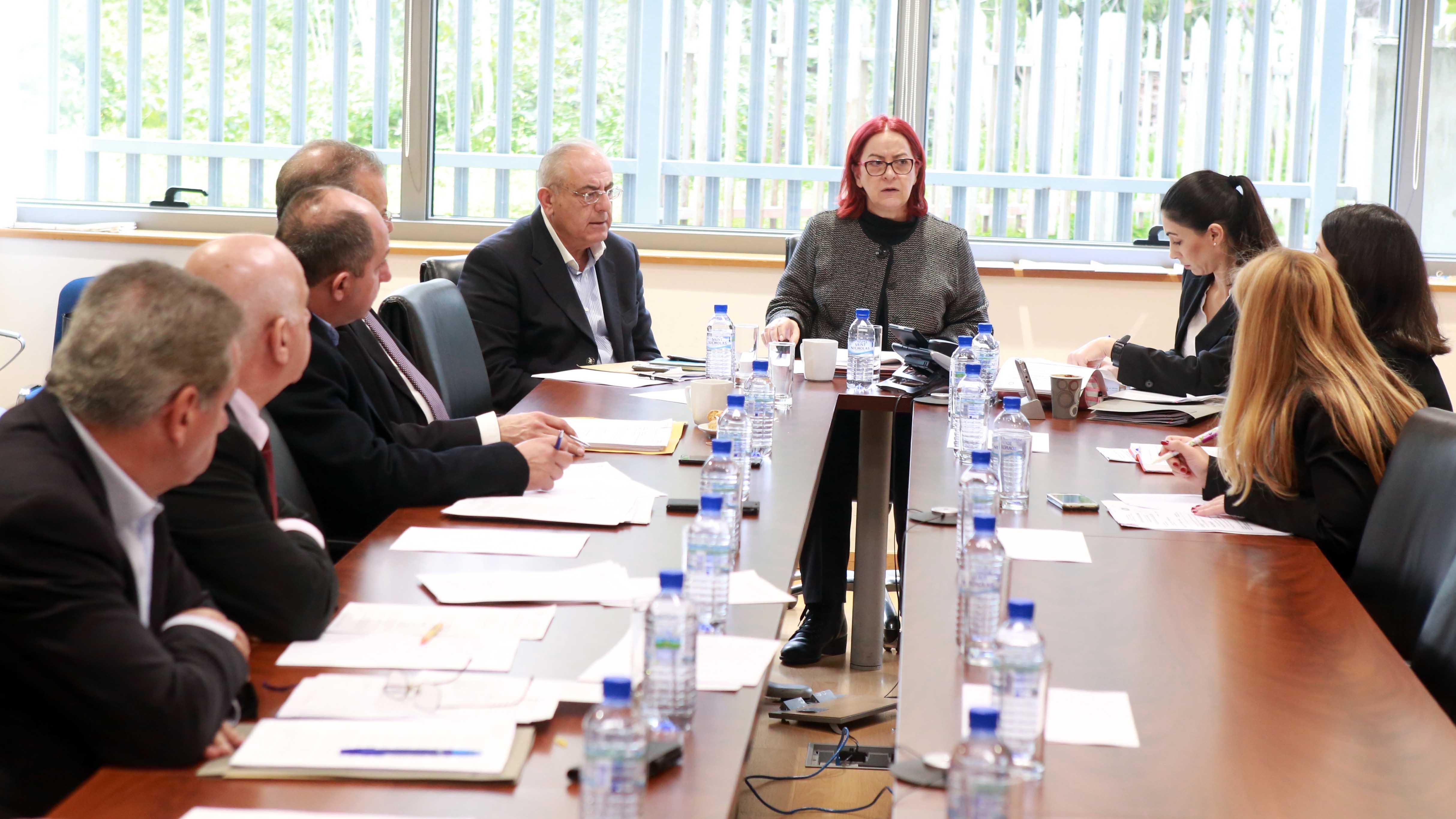 Η Επιτροπή Εσωτερικών εισηγείται αποδοχή της αναπομπής του νόμου για την ακίνητη ιδιοκτησία