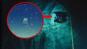 Πετρελαιοφάγα μικρόβια βρέθηκαν στο βάθος των ωκεανών