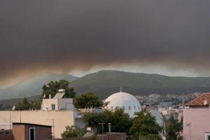 Φωτιά στην Εύβοια: Ετοιμότητα Κύπρου να συνδράμει στην κατάσβεση της φωτιάς