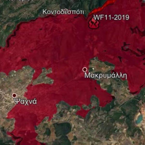 Το χειρότερο δυνατό σενάριο από τη φωτιά στην Εύβοια (βίντεο)