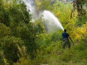 Φωτιά στην Εύβοια: Τηλεφωνική επικοινωνία Χριστοδουλίδη – Δένδια